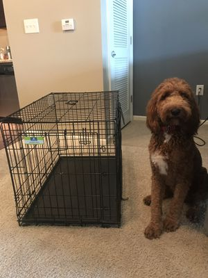 Dog crate for Sale in Smyrna, TN