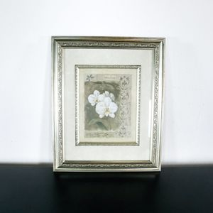 Framed Print of Orchid (1037162) for Sale in South San Francisco, CA