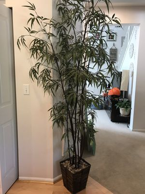Fake bamboo plant for Sale in Renton, WA
