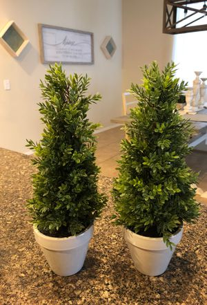 Faux topiary for Sale in Goodyear, AZ