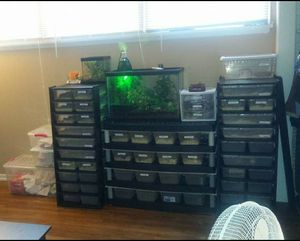 (2) 10 lvl Snake/Reptile Racks w/ belly heat for Sale in Farmville, VA
