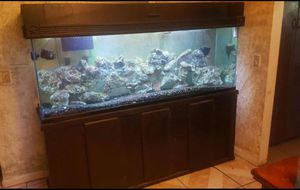 135 gallon fresh/ salt water fish tank. for Sale in Beverly Hills, CA