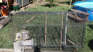 bird cage with dividers and feeders for Sale in Galt, CA