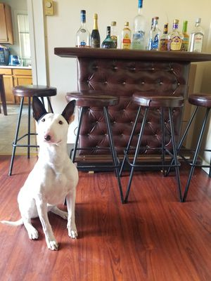 "Mid century modern Bar island and stool (leather) dimensions 40"" height × 48"" lenth × 18"" width for Sale in Seattle, WA"