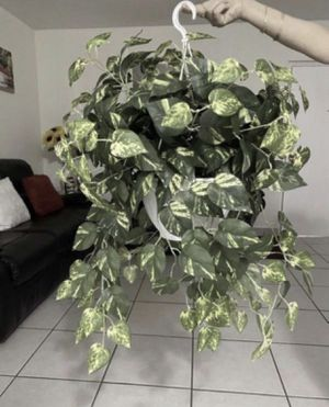 fake plant decor for Sale in Hialeah, FL
