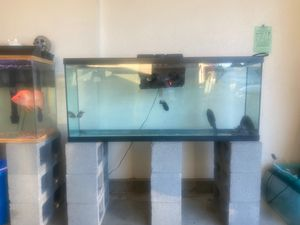 50 gal tank for Sale in Vacaville, CA