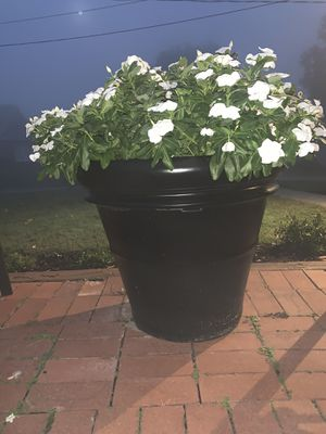 Huge planter for Sale in Sewickley, PA