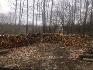 Firewood for Sale in Dundee, NY