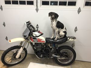 Yamaha XT 500 for Sale in Vancouver, WA