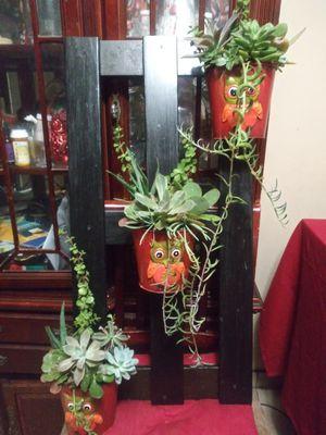 Succulents en base de madera grande mide 18x32 pulgadas for Sale in South Gate, CA