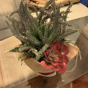 Fake Plant 3 for Sale in Las Vegas, NV
