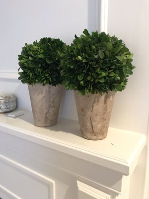 Topiary decor set of 2 for Sale in Houston, TX