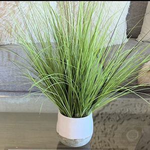 Beautiful Fake Plant (Negotiable) for Sale in Rancho Palos Verdes, CA