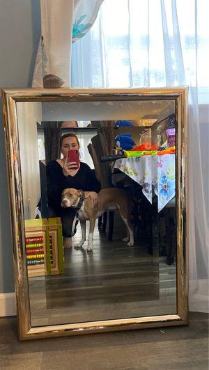 Mirror for Sale in Penndel, PA