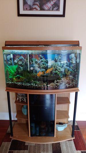 55 Gallon Fish Tank Aquarium with Fluval & Ultraviolet filteration for Sale in Naperville, IL