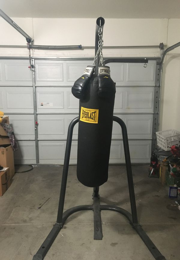 Everlast boxing bag and gloves included