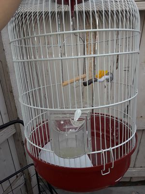 Bird cage $20 for Sale in Fresno, CA
