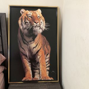 Tiger Picture With Frame for Sale in Houston, TX