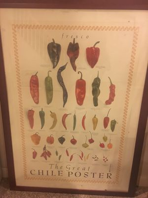 Southwestern poster with frame for Sale in Crofton, MD