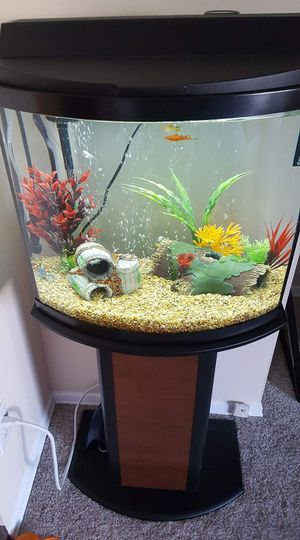 16 Gallon Fish Tank With Stand,Heater,Filter for Sale in Mentor, OH