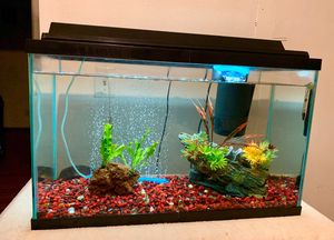 29 Gallon Fish Tank for Sale in San Diego, CA