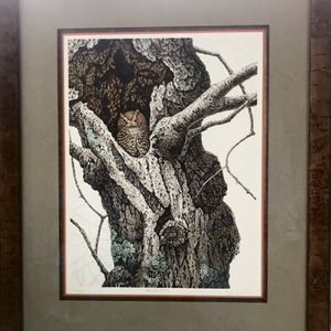 Framed Chris Forrest Screech Owl Limited Edition Lithograph for Sale in Gaithersburg, MD
