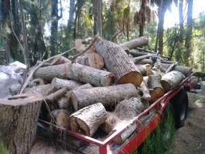 Trailer full of wood for Sale in Gibsonton, FL