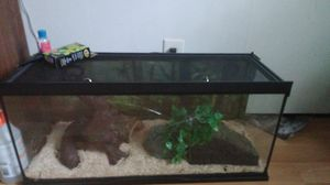 Snake cage for Sale in Traverse City, MI