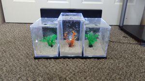Aquarium for Sale in North Las Vegas, NV