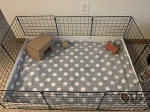 Guinea Pig Cage and Supplies for Sale in Morgantown, WV