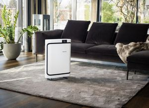 Boneco P500 air purifier with HEPA and activated carbon filter for Sale in Wheaton, IL