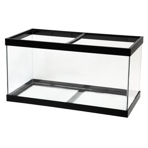 Standard 50 gallon fish tank for Sale in Chelsea, MA