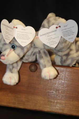 Silver the cat ty beanie baby for Sale in Orlando, FL