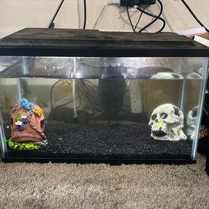 10 Gallon Fish Tank for Sale in Everett, WA