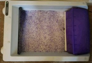 Scoopfree self cleaning litter box for Sale in Lexington, KY