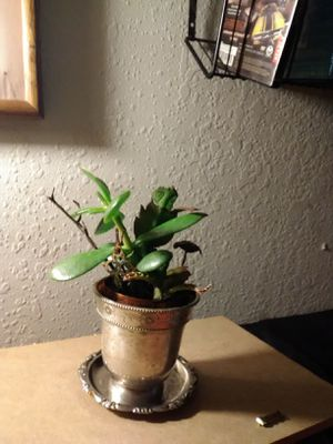 Antique Silver Succulent Pot w Brass Toadstool Accent for Sale in Sacramento, CA
