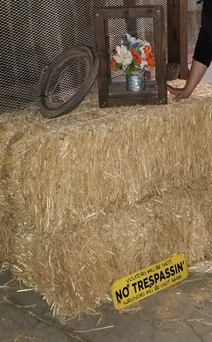 Hay / straw bale / paja for Sale in East Compton, CA
