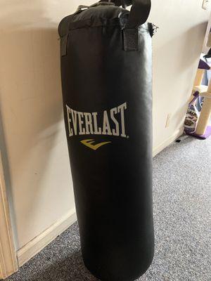 Everlast Punching Bag for Sale in Birmingham, MI