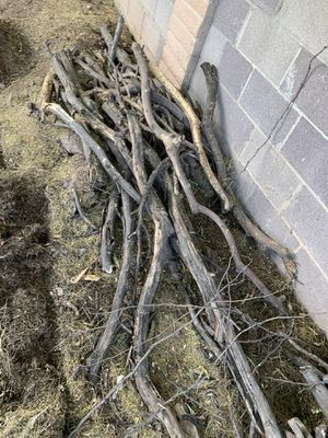 Free fire wood for Sale in Apache Junction, AZ