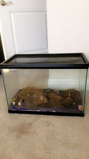 50 Gallon Fish or Reptile Tank for Sale in Key Biscayne, FL