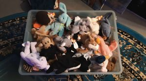 container of 80 beanie babies in amazing conditon for Sale in Quincy, MA