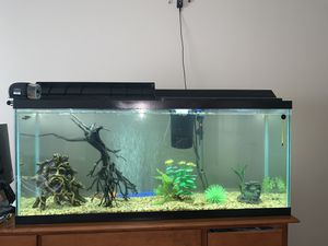 50 Gallon Fish Tank for Sale in Grayslake, IL