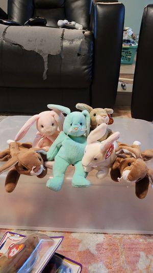 Various Beanie Baby Bunnies for Sale in Argyle, TX