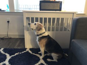 Dog Furniture Kennel (Large) for Sale in North Bethesda, MD