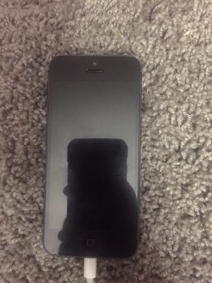 iPhone 5S for Sale in Washington, DC