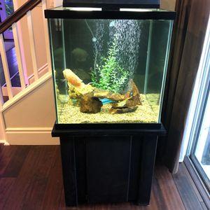 60 Gallon Fish Tank Complete for Sale in Irvine, CA