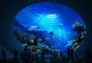 Seattle Aquarium (4 tix) for Sale in Lake Stevens, WA
