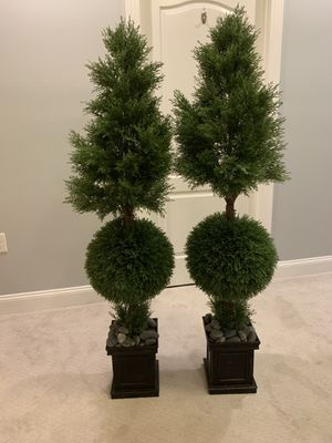 Beautiful topiaries! Originally paid $320 for both 2 years ago. They just don't fit our current space. for Sale in Ashburn, VA