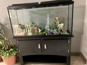 Fish tank with stand (furniture) for Sale in Winchester, VA
