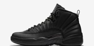Jordan 12 Winterized Sz8 for Sale in Columbus, OH